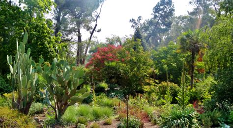 Wpa Rock Garden Best Places In Sacramento To Take Family Photos 171 Cbs Sacramento