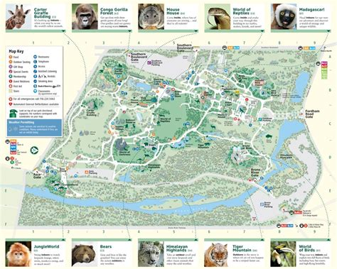 bronx zoo map bronx zoo maplets