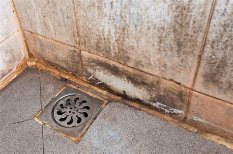 come isolare una parete interna dalla muffa mai piu box doccia con calcare e muffa con chiarimenti