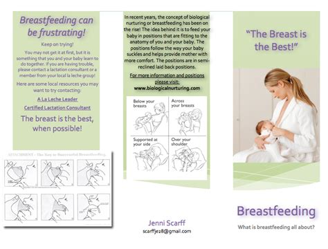 breastfeeding brochure templates my americorps adventure new and improved