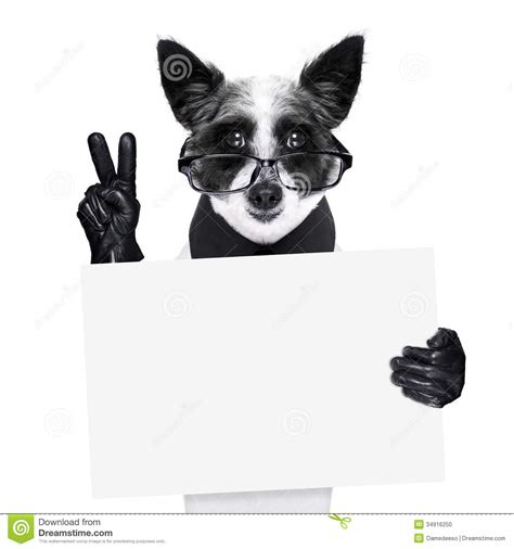 peace puppies peace fingers stock photo image 34916250