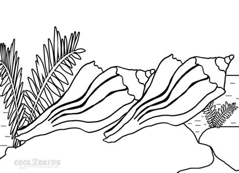 seashells coloring coloring pages