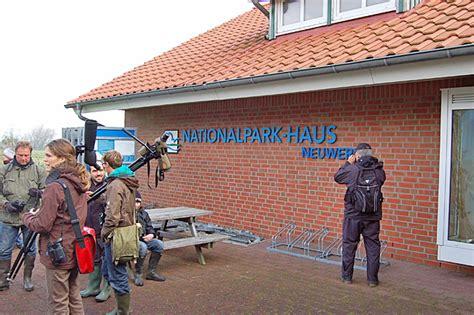 haus seeblick neuwerk das nationalpark haus neuwerk