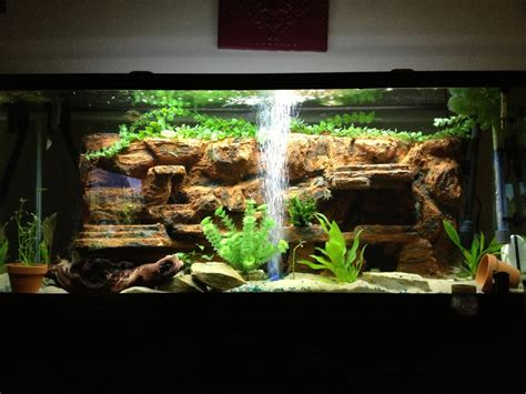 freshwater aquascaping designs freshwater aquascape designs aquarium advice