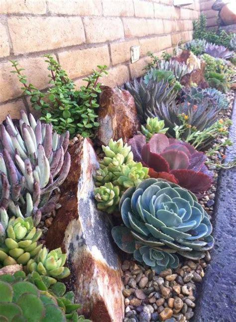 en tu decoracion modelos jardines  cactus piedras crasas suculentas scodiocom