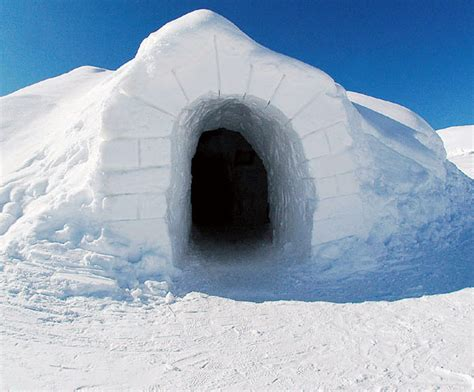 igloo house weird and wonderful hotel experiences from around the world