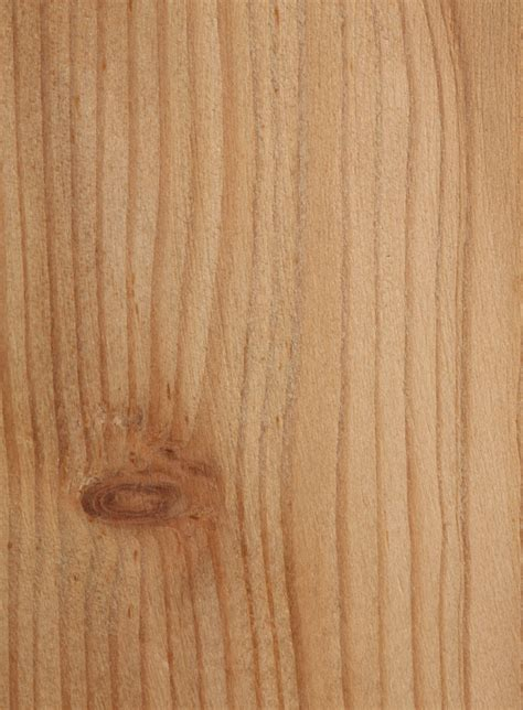 laerchenholz behandeln diese schutzmittel eignen sich