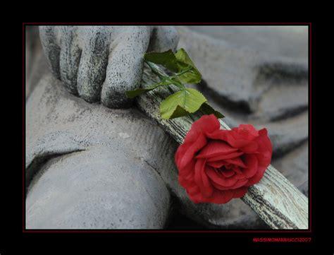 fiori colori fiori e pietre colori e bianco e nero vita e morte