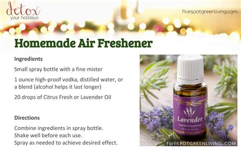 Detox Air Freshener by Aromatherapy Spray Five Spot Green Living