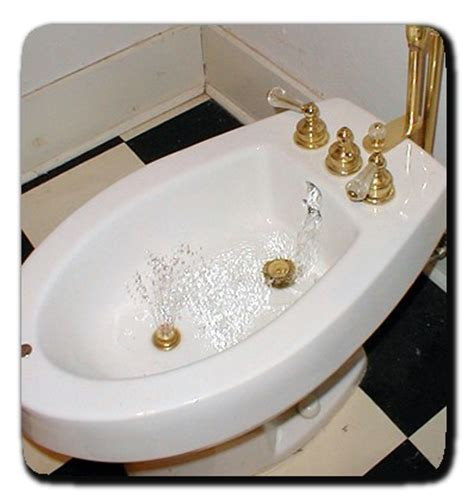 what is a bidet in a bathroom bidet