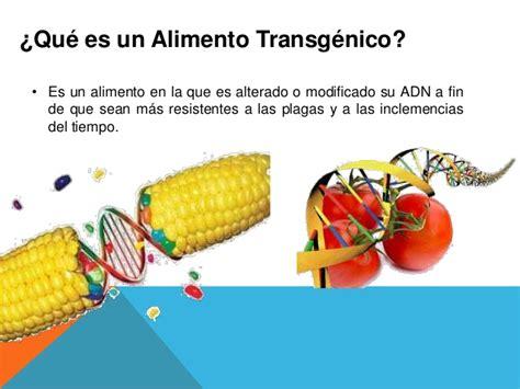 alimentos transgenicos tics