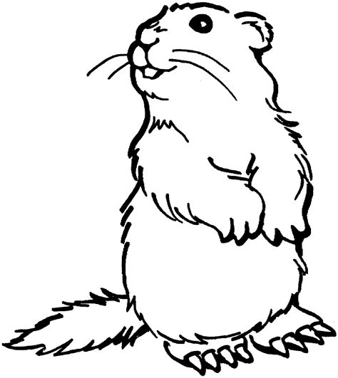 little house on the prairie dog prairie dog clipart 40