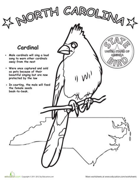 Carolina Worksheets by Carolina State Bird Carolina Worksheets And