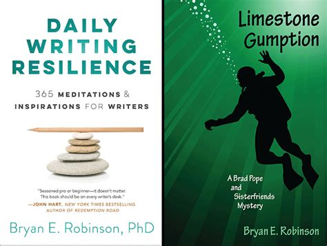 daily writing resilience 365 meditations inspirations for writers books bryan e robinson