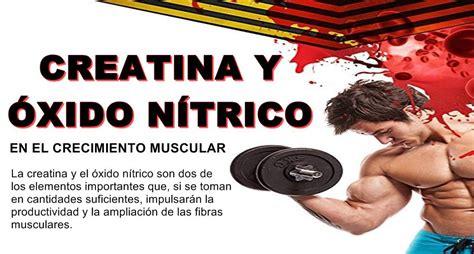 aminoacidos y creatina creatina y 243 xido n 237 trico en el crecimiento muscular