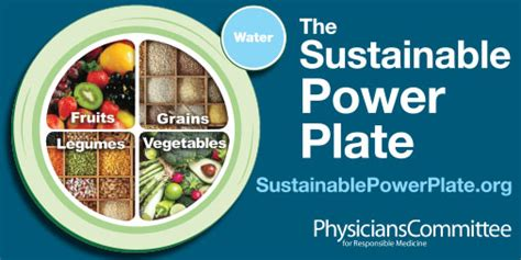 power plates 100 nutritionally balanced one dish vegan meals books new dietary guidelines the the bad and the