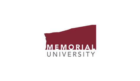 Memorial Of Newfoundland Mba by Internships For Undergraduate Students The Importance Of