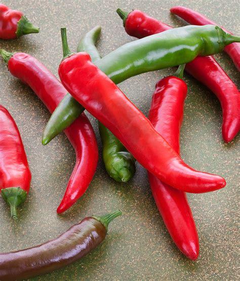 Garden Salsa Pepper by Garden Salsa Pepper Medium Heat Best For Salsa