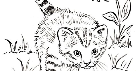 Coloring Page Kitten by Kitten Coloring Page Bell