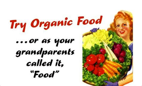 organic food suzanne 187 17 essential reasons to eat organic food