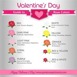 meaning of color of roses the meaning of colors a s day guide