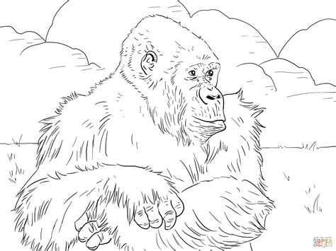 gorilla outline coloring page image gallery mountain gorilla drawing