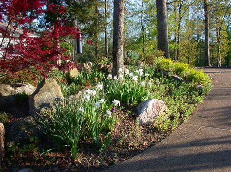 36 best images about nw landscaping on pinterest gardens