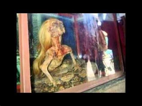 film manusia ular penungu hutan ular berkepala manusia di aceh utara youtube