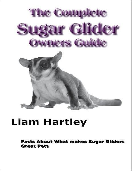 Sugar Glider Series the complete sugar glider owners guide facts about what makes sugar gliders great pets by liam