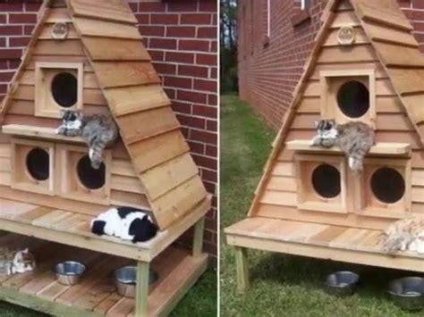 cara membuat rumah kucing dari kardus sederhana cara membuat rumah kucing sederhana funnycat tv