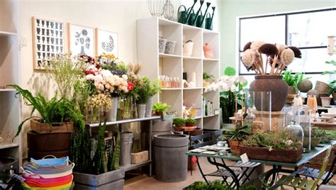 urban garden shop interior of gdrn store in brooklyn new