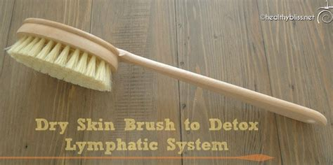 How To Skin Brush For Detox by Brushing Lymphatic System Cleanse Diydry Co