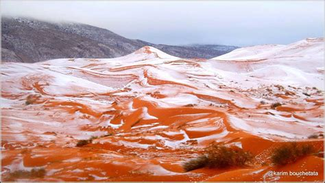 sahara snowfall first snow in the last 30 years covers algerian sahara in