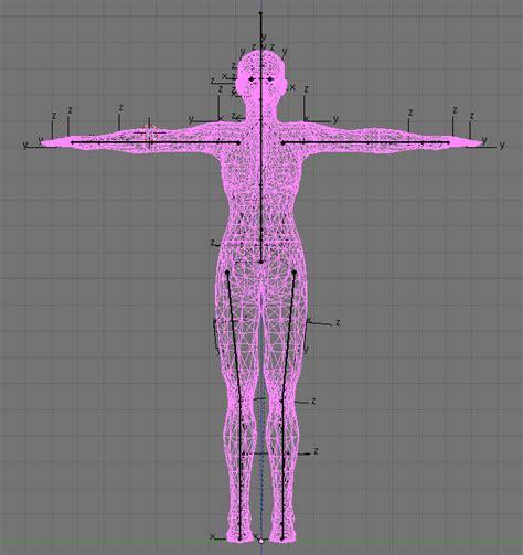 second life templates for blender rigg your avatar blender 2 49 machinimatrix