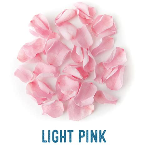 Bloom Box Light Pink Multicolor Preserved Flower Uk 10 X10 Cm coloured petals real flower confetti company