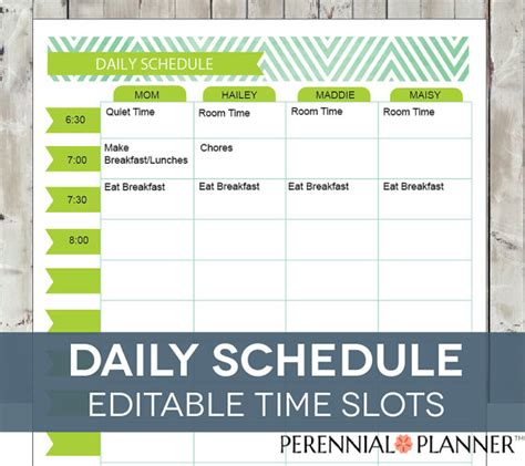 printable daily schedule for homeschool daily schedule hourly printable editable planner for moms