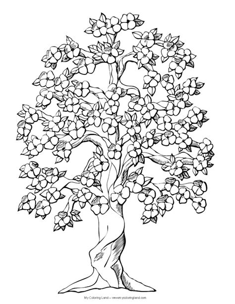 coloring pictures of flowers and trees coloring pages best photos of plex flower coloring pages