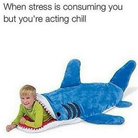 Stress Meme - best 20 stress humor ideas on pinterest