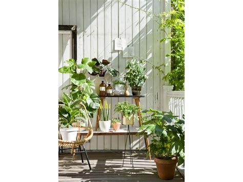 come arredare un terrazzo con fiori e piante come arredare il balcone con piante e fiori grazia