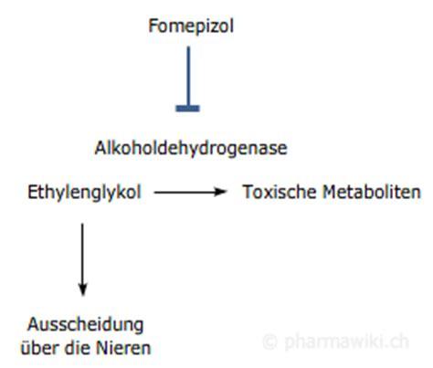 induktor cyp450 induktor cyp450 25 images pharmawiki fomepizol lungenentz 252 ndungen ambulant erworbene