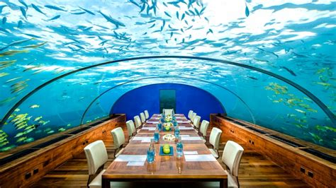 Kitchen With Breakfast Bar Designs by Private Room Dining London Maldives Underwater Restaurant