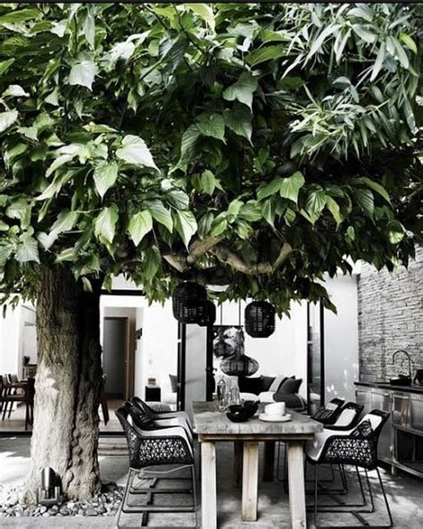 10 gorgeous black and white patio design ideas https