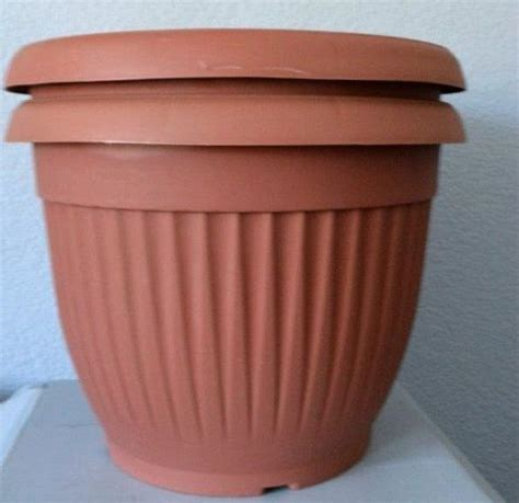 cheap containers for gardening 25 best ideas about cheap plant pots on