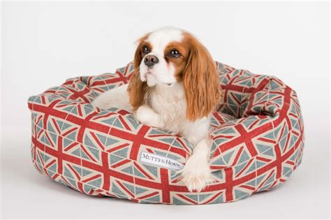 puppies that are flag beds that are a must for patriotic pets