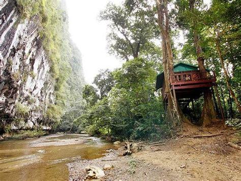 our jungle house our jungle house khao sok national park thailand hotel reviews tripadvisor
