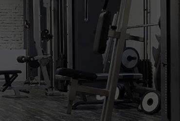 theme avada gym gym avada wp theme