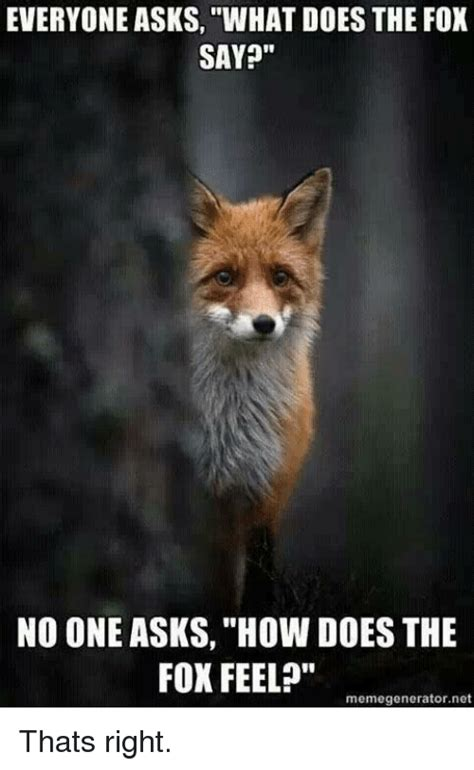 What Did The Fox Say Meme - 25 best memes about what does the fox say what does the