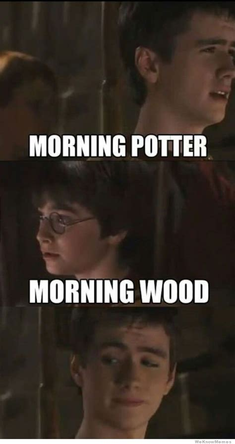 Morning Wood Meme - morning potter meme collection