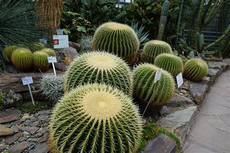 botanischer garten nrw botanischer garten nrw m 246 bel und heimat design inspiration