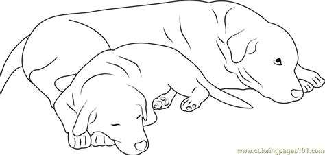 sleeping puppies coloring pages dog sleeping with mother coloring page free dog coloring